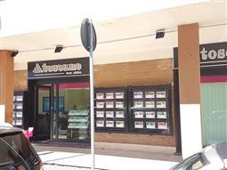 Agenzia Ladispoli