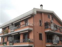 Casa in affitto di 80 mq a €800 (rif. 150/2017)