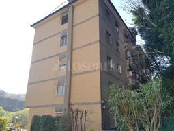 Casa in vendita di 135 mq a €615.000 (rif. 33/2017)