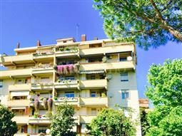 Casa in affitto di 14 mq a €450 (rif. 163/2017)